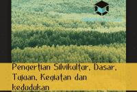 pengertian silvikultur hutan tanaman
