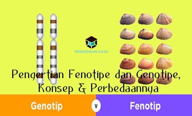 Pengertian Fenotipe dan Genotipe, Konsep & Perbedaannya