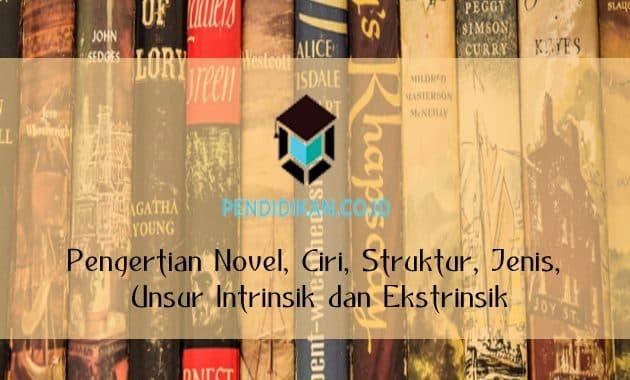 Pengertian Novel, Ciri, Struktur, Jenis, Unsur Intrinsik dan Ekstrinsik