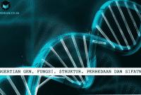 Pengertian Gen, Fungsi, Struktur, Perbedaan dan Sifatnya