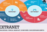 Pengertian Extranet, Fungsi, Manfaat, Komponen, dan Kekurangannya