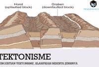 Pengertian Tektonisme, Klasifikasi Beserta Jenisnya