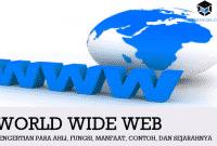 Pengertian WWW Para Ahli, Fungsi, Manfaat, Contoh, dan Sejarahnya