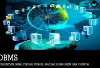 Pengertian DBMS, Tujuan, Fungsi, Macam, Komponen dan Contoh