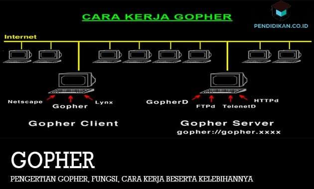 Pengertian Gopher, Fungsi, Cara Kerja Beserta Kelebihannya