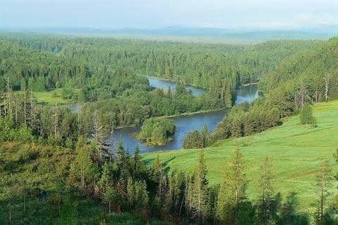 Daerah-Hutan-Taiga