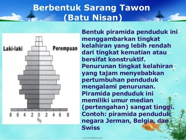 Piramida-Penduduk-Sarang-Tawon