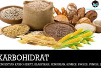 pengertian-karbohidrat