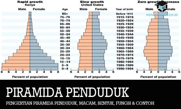 pengertian-piramida-penduduk