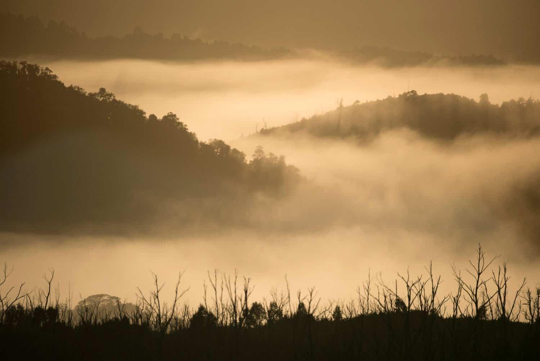 Barometric-Fog