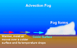 Kabut-Advection
