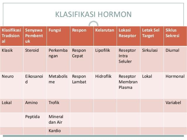 Klasifikasi-Hormon