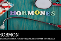 Pengertian Hormon