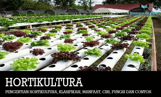 Pengertian Hortikultura