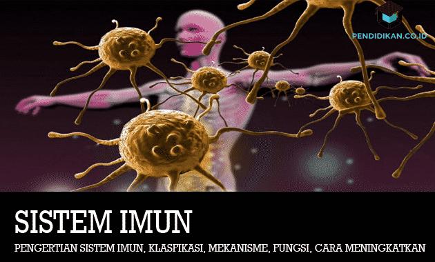 Pengertian Sistem Imun
