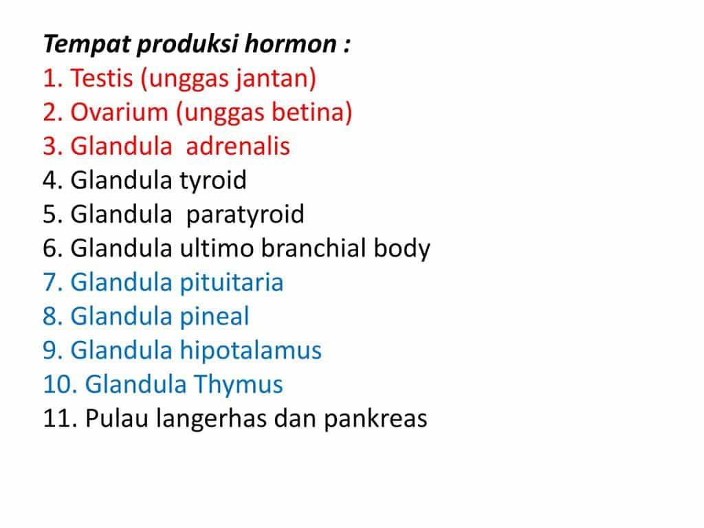 Produksi-Hormon