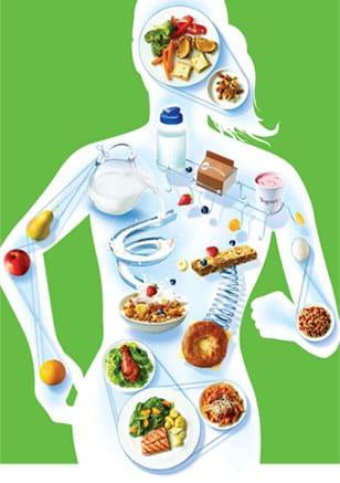Fungsi-Nutrisi