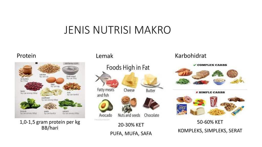 Jenis-Nutrisi-Makro
