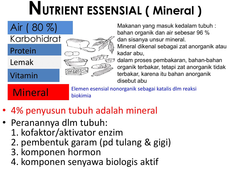 Mineral-serta-trace-elemen