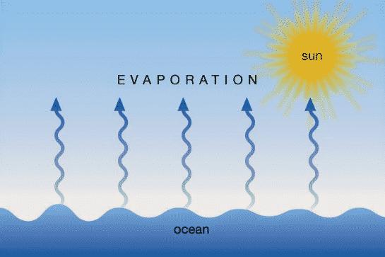 Jenis-Evaporasi