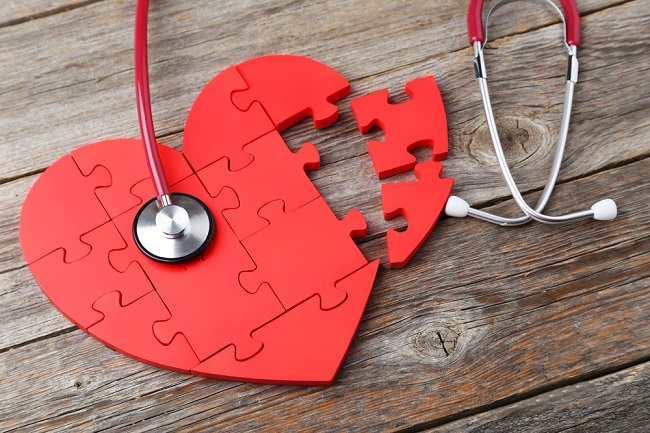 Pengertian Otot Jantung, Ciri, Fungsi, Struktur dan Cara Kerja