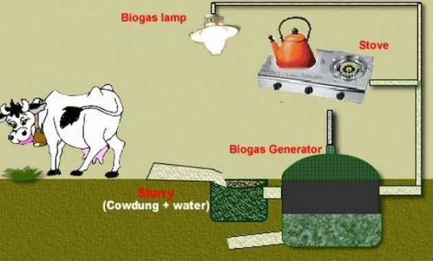 Manfaat-Biogas