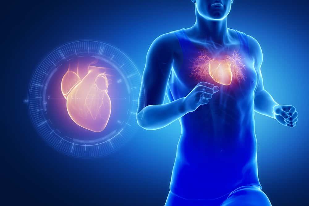 Menjaga-Kesehatan-Otot-Jantung