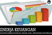 Pengertian Kinerja Keuangan