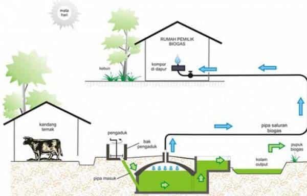 Proses- Pembuatan-Biogas